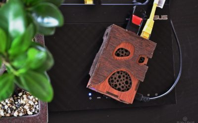Raspberry Pi TorrentBox: Build an Always-On Torrent Machine