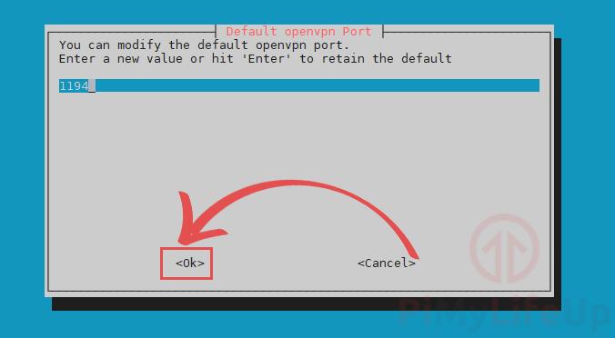 Set default OpenVPN port