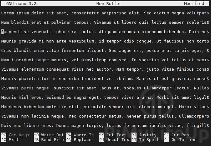 nano editing text