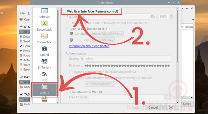 Enable the qbittorrent Web Interface