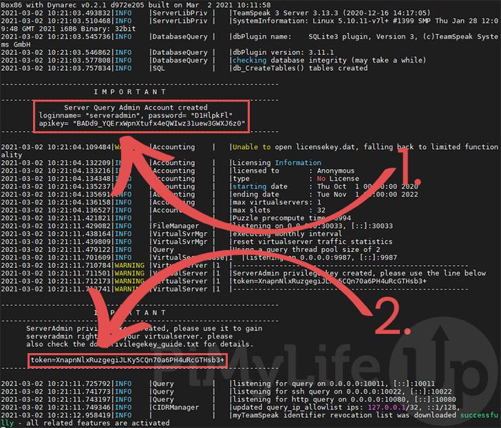 Raspberry pi TeamSpeak Server Successfully Running