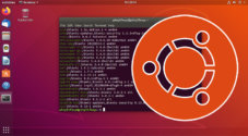 Ubuntu list installed packages